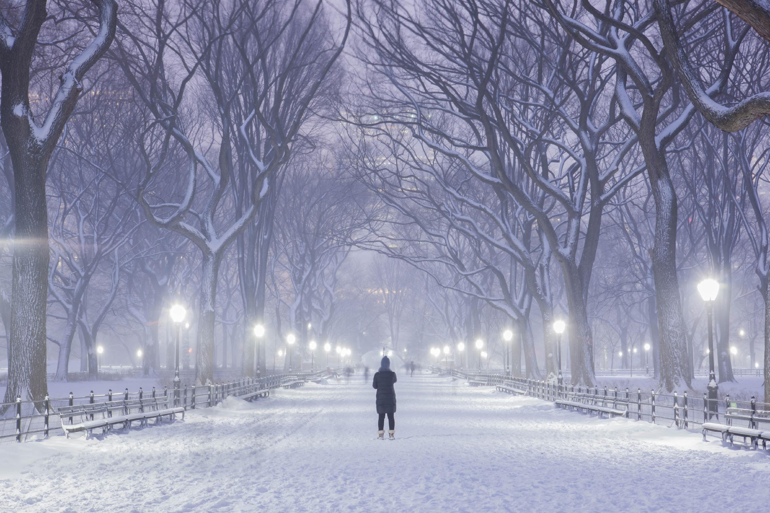 Bella's Buzz – What's Happening in New York in January